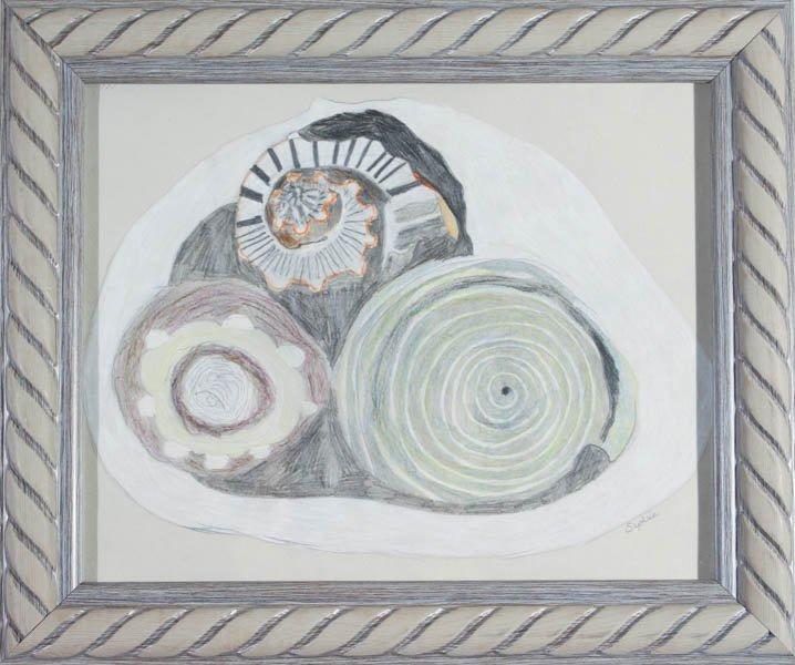 "222 ""Spirals"" by Sophia Marzka"