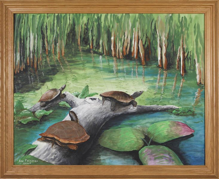 "346 ""Presque Isle Turtles"" by Kenneth C. Fairman"
