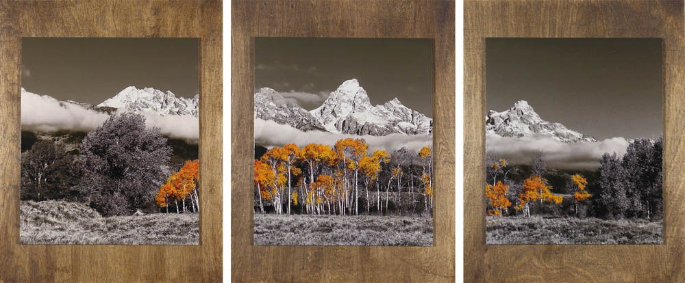 "458 ""Grand Tetons in Autumn"" by Patti Larson"