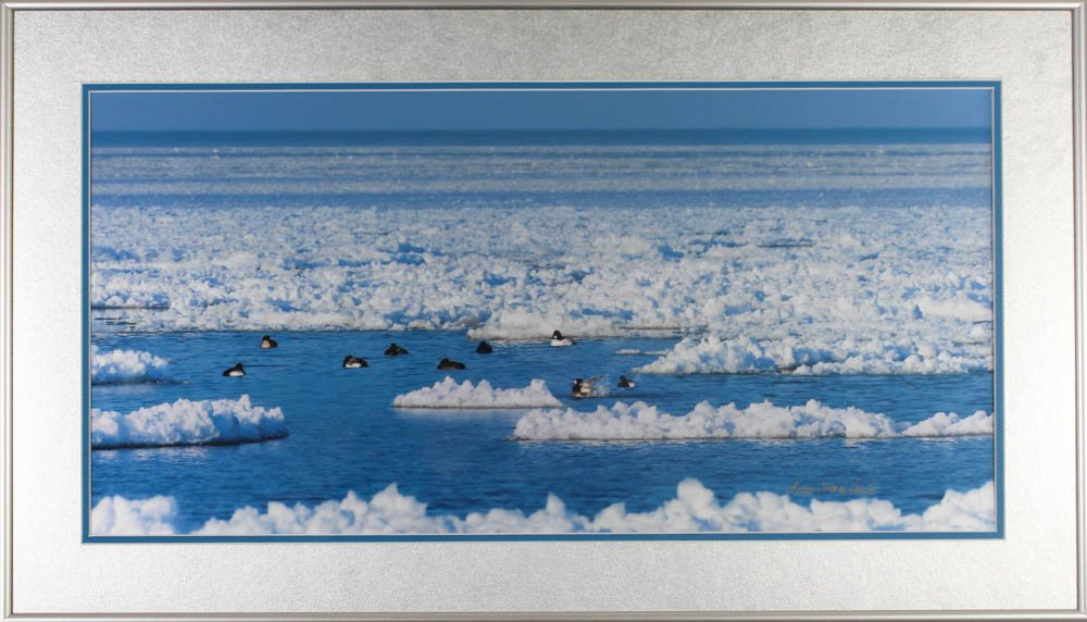"509 ""Lake Erie Ice Flows"" by Anna Marie Senita"